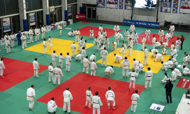 Handival Judo Nord !